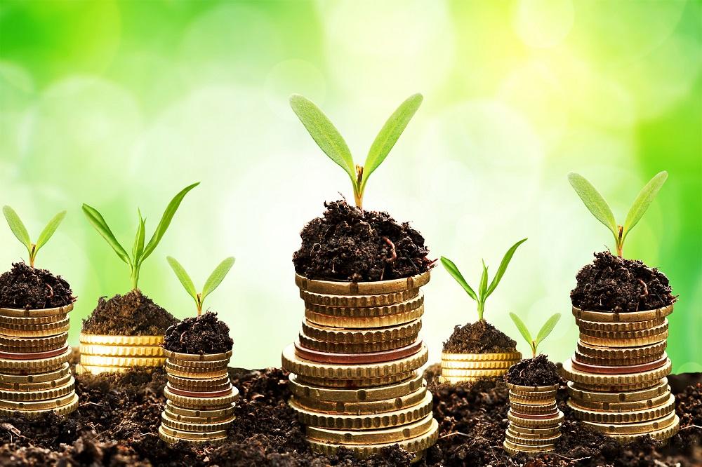 Những nguyên tắc vàng để đầu tư tài chính hiệu quả